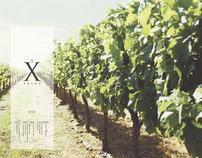 Xclus vinyard
