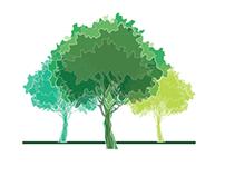 Digital Groves logo design