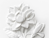 Paper Sculpture : White Thai Flowers