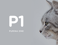 Purina One Cat Chow Packaging