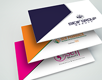 """Seif Group"" Company Profile"