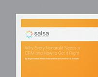 Salsa Labs Rebranding