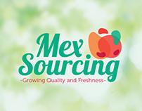 MexSourcing - Branding