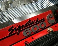 Temporada 2010 - 2011