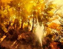 Orange. Autumn
