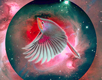 Animales cósmicos fantásticos