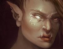 Half-orc Portrait