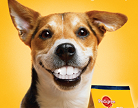Pedigree Dentastix  Summer Campaign Posters