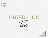 Gutfreund Trio | LOGO Presentation #4 (final expansion)