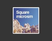 Square microsm | 2010