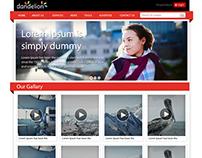 Video Gallary Theam Web Designs