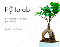 Online store plants