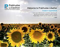 PL Website design