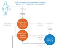 Flow chart diagrams