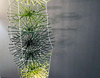Fine Art || Line Project