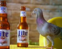 Miller Lite - Pigeons