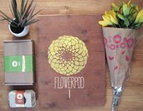 Southwell Care Project 'FlowerPod' Branding