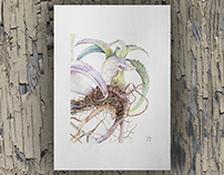Cactus púrpura | 2017