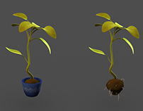 3D Plants From Shift