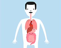 Gut Microbiome Animation (Assets)