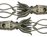 Collamarus
