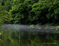 MIST ON THE SPRING WATER...