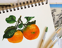 Watercolor tangerine