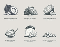 Palato Chocolate Illustrations