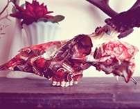 Until After Dinner // Whitetail Deer Skull // Collage
