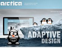 Arctica Responsive Wordpress Theme
