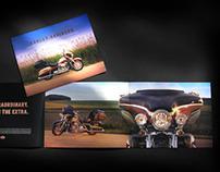 Harley-Davidson Screamin' Eagle Customs