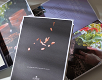 Promotional brochure for Dunbar Bank
