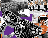 300 for 30 - Tiger Band Alumni 30th Anniversary