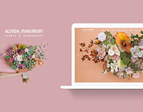 E-commerce for flowershop