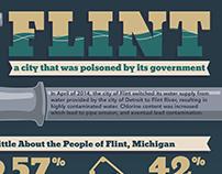 Flint Infographic