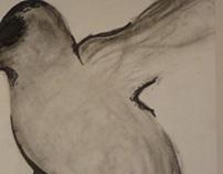 """""""Odd Bird"""""""