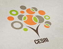 CESRI - Caribbean Economic & Social Research Institute