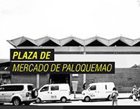 CC_U.I.TECNICA _PALOQUEMAO_20151