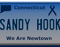 New CT license plate