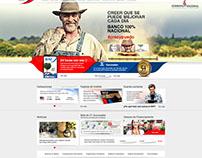Banco Nacional de Fomento - Projeto Experimental