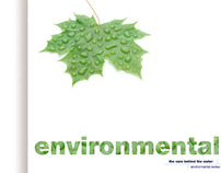 Design of Environmental Review for WOSW