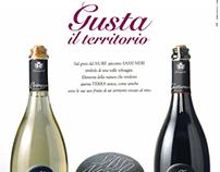 Cantine Romagnoli :: Etichetta e Campagna Sasso Nero
