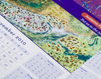 UMass Memorial Anatomic Pathology Calendars