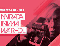 Collección Fortabat: Warhol's Polaroids Exhibition