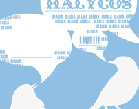 Halycos band ads