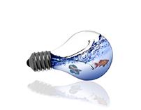 Fish Swimming in a Lightbulb