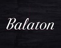 VinCE Balaton 2013 / I.