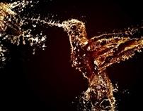 Water Splash Bird