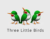 Brand Identity Case Study • Three Little Birds