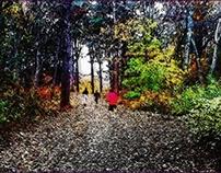 Cold Fall Walk 2012